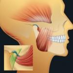 Ostéopathie-dentaire